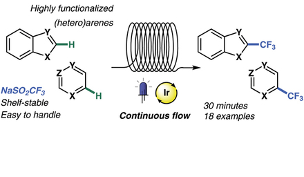 Timothy Nöel and Jesus Alcazar describe the trifluoromethylation of highly functionalized heteroarenes.