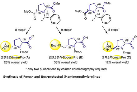 Synthesis of Fmoc- and Boc-protected 5-aminomethylprolines