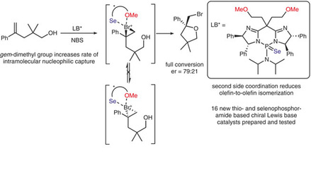 Scott Denmark gives insight into the mechanism of the bromocycloetherification of alkenes.