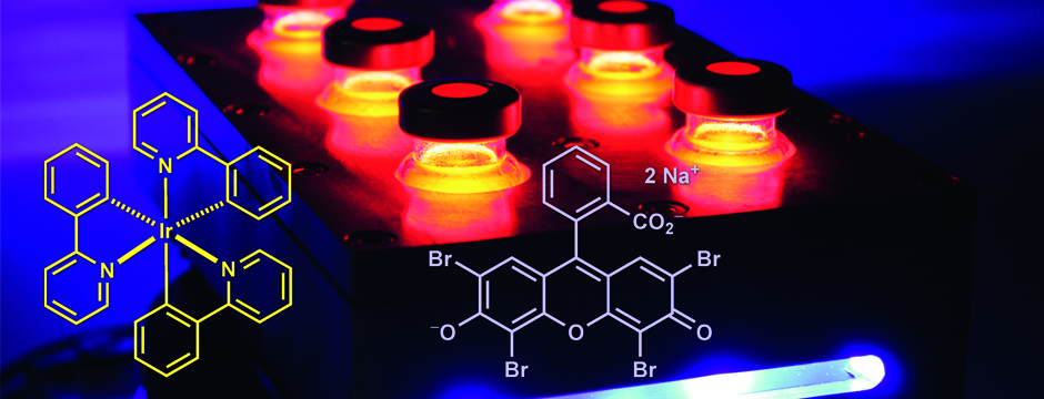 image of workbench edition Photocatalysis in Organic Synthesis