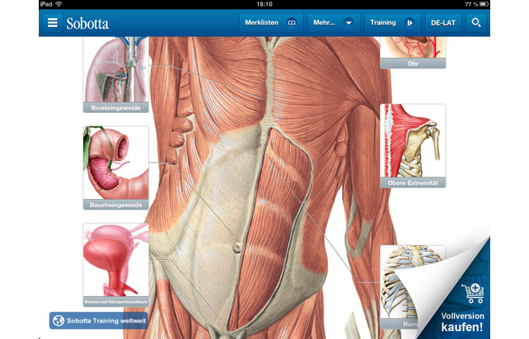 Apps für Mediziner: Sobotta Anatomie Atlas - Klinik - Via medici