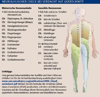 Verletzung der Halswirbelsäule - Klinik- Via medici