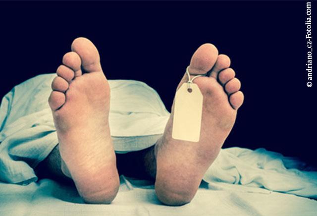 Privileg Präparierkurs - Die Toten lehren die Lebenden - Vorklinik ...